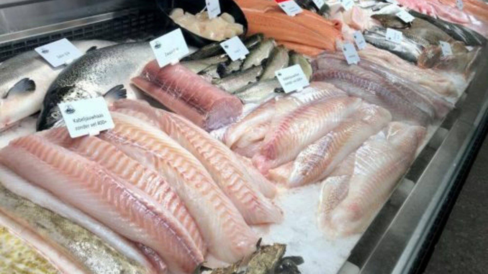 Vaste vestiging voor vis in Vlijtingen